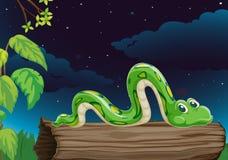 Un serpent Image libre de droits