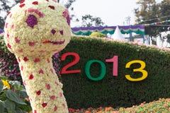 Année 2013 de serpent Photographie stock libre de droits