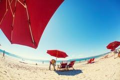 Un service cinq étoiles : Un assistant de plage assemblant l'umbrel rouge du soleil Photo stock