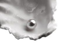 Un shell con la perla Foto de archivo