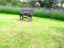 Un siège en bois Images stock