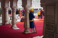 Un sikh con una lanza - guerrero indio duro que guarda el templo de oro Foto de archivo