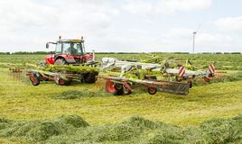 Un silaggio del fieno di rastrellamento del trattore agricolo nel campo Immagini Stock