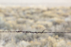 Barb-Cavo del singolo filo con il fondo del deserto Immagine Stock