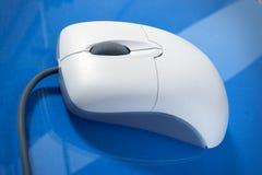 Un singolo mouse Fotografia Stock Libera da Diritti