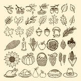 Un sistema de elementos del otoño de la naturaleza hechos a mano Elementos del diseño para la acción de gracias y del banquete de stock de ilustración