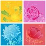 Un sistema de flores handdrawn estilizadas Imágenes de archivo libres de regalías
