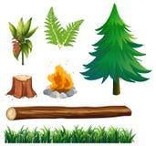 Un sistema de Forest Element Fotografía de archivo