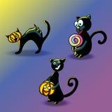 Un sistema de gatos negros divertidos para celebrar Halloween Imágenes de archivo libres de regalías
