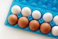 Un sistema de huevos amarillos y blancos Fotografía de archivo