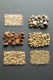 Un sistema de las semillas orgánicas para el cultivo natural, verticalmente imágenes de archivo libres de regalías