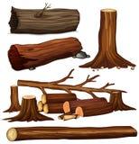 Un sistema de madera del árbol Imagen de archivo