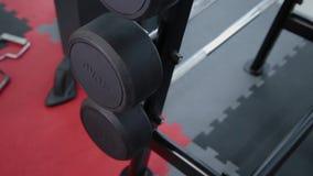 Un sistema de pesos con un diverso peso en el estante en el gimnasio almacen de metraje de vídeo