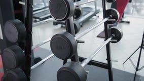 Un sistema de pesos con un diverso peso en el estante en el gimnasio almacen de video