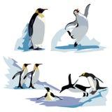 Un sistema de pingüinos imperiales realistas en diversas actitudes Pájaros y polluelos adultos ilustración del vector