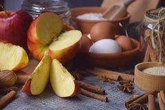 Un sistema de productos y de especias orgánicos para una dieta sana vitamina Imágenes de archivo libres de regalías