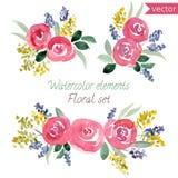 Un sistema de rosas de la acuarela florece y hoja Imágenes de archivo libres de regalías