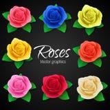Un sistema de rosas realistas en diversos colores Gráficos de vector Foto de archivo libre de regalías