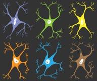 Un sistema de seis células nerviosas de los elementos Fotografía de archivo libre de regalías