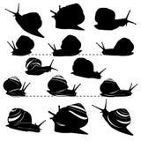 Un sistema de siluetas de caracoles Fotografía de archivo