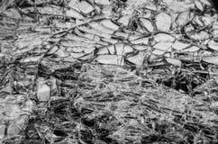 Un smartphone quebrado Foto de archivo