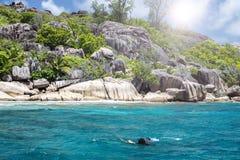 Un snorkeler à un récif coralien d'île avec la tortue. Les Seychelles. image libre de droits