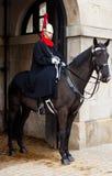 Un soldat de la cavalerie inscrit en dehors des dispositifs protecteurs de cheval Photos stock