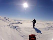 Un sole adorabile in Norvegia Immagini Stock
