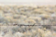 Barb-Alambre del solo filamento con el fondo del desierto Imagen de archivo