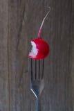 Un soporte de la bifurcación rábanos mordidos por la mitad Fotografía de archivo