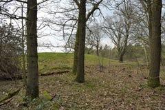 Un soporte grave antiguo en la montaña del Frisian vista de la parte trasera, Rijssen Overijssel imagen de archivo