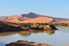Un Sossusvlei inundado en el desierto de Namib   Fotos de archivo libres de regalías