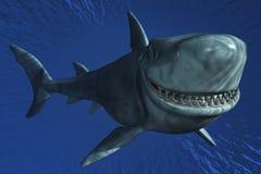 Un sourire de requin Photo libre de droits