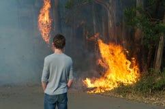 Un spectateur observe un buisson mettre le feu allégué commencé par court-circuiter des lignes électriques à Hilton, Pietermaritzb Photographie stock