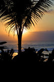 Un sueño de la puesta del sol amorosa imagen de archivo libre de regalías