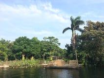 Un sueño subtropical fotos de archivo libres de regalías