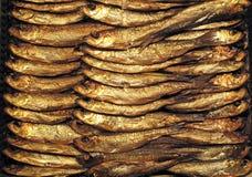 Un support des poissons fumés frais Image stock