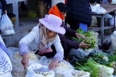 Un supporto della verdura nel mercato del villaggio di Shaxi, il Yunnan, Cina fotografia stock