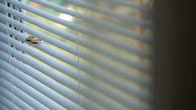 Un supporto dorato nuziale di due anelli sul davanzale bianco archivi video