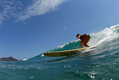 Un surfista di longboard del bikini fotografia stock libera da diritti