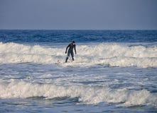 Un surfista guida le onde nell'acqua Immagine Stock Libera da Diritti
