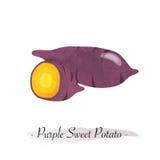 Un swee púrpura vegetal sano de la acuarela del vector colorido de la textura stock de ilustración
