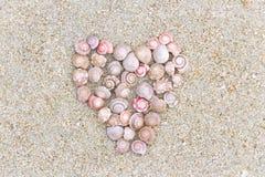 Un symbole de l'amour a fait une forme de coeur de la coquille sur le Ne de plage Image libre de droits