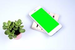 Un téléphone intelligent mobile moderne avec l'espace vert vide de recopie d'écran images stock