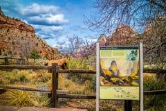 Un tablero de la descripci?n para el rastro en Zion National Park, Utah imagenes de archivo