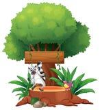 Un tablero vacío debajo de un árbol grande stock de ilustración