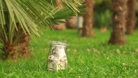 Un tarro de cristal con los dólares de los billetes contra un fondo de la palmera Acumule los ahorros en licencia metrajes