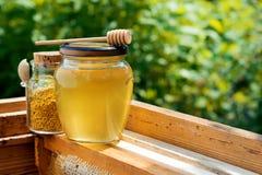 Un tarro de miel y un tarro de polen de la abeja en la colmena Panal Productos de la apicultura Fotografía de archivo libre de regalías