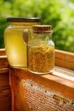 Un tarro de miel y un tarro de polen de la abeja en la colmena Panal Productos de la apicultura Fotos de archivo libres de regalías
