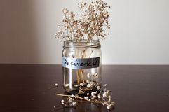Un tarro del concepto del retiro con las monedas y la planta secada imágenes de archivo libres de regalías